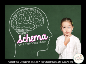 Concrete Comprehension: Schema and Metacognition for Intermediate Learners