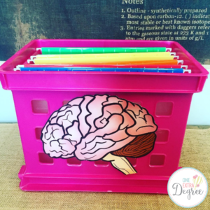 This is your brain as a filing cabinet!